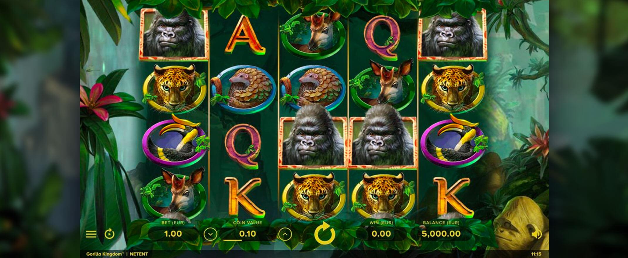 Gorilla-Kingdom